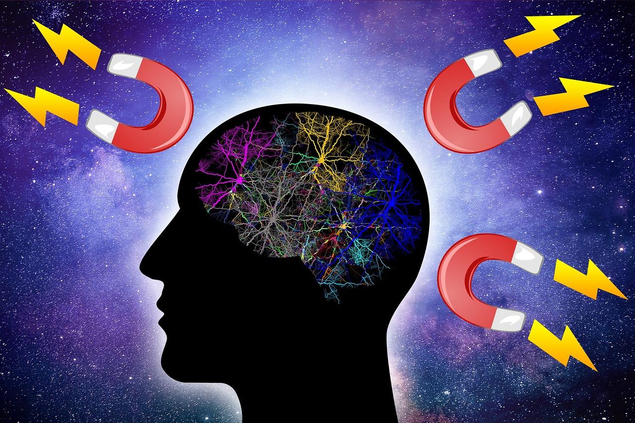 Smarter Brain Better Life